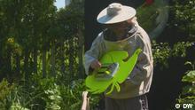 DW Sendung Euromaxx | Bees
