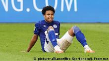 Fußball Weston McKennie 33. Spieltag: FC Schalke 04 - VfL Wolfsburg