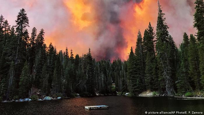شش مورد از آتشسوزیهایی که در حال حاضر در کالیفرنیا شعلهورند جزو ۲۰ مورد از بزرگترین حریقهای تاریخ این ایالت از شروع ثبت آتشسوزیها در سال ۱۹۳۰ هستند.