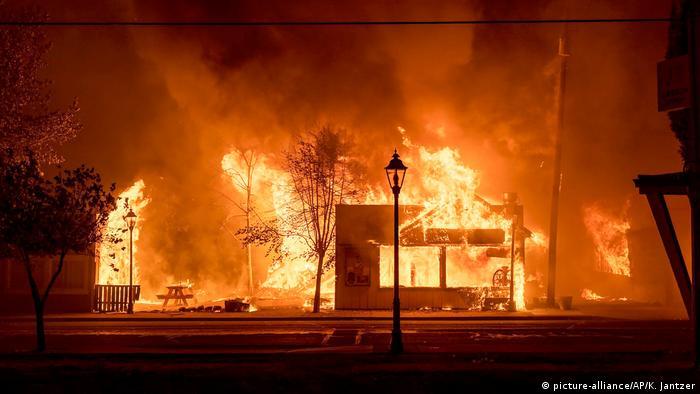 Waldbrände in den USA (picture-alliance/AP/K. Jantzer)