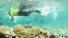 Dokumentation 10810 Malediven