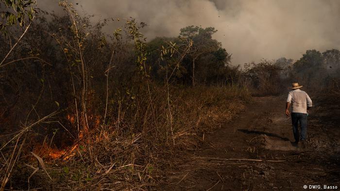Brasilien Pantanal Waldbrände (DW/G. Basso)