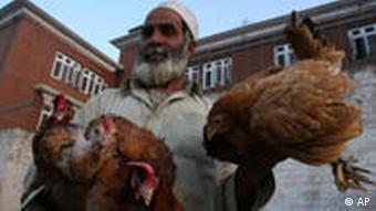 A Pashtun sells chicken to earn living for his family in Peshawar