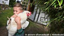 BdT Hühnerhaltung als Hobby in Corona-Zeiten