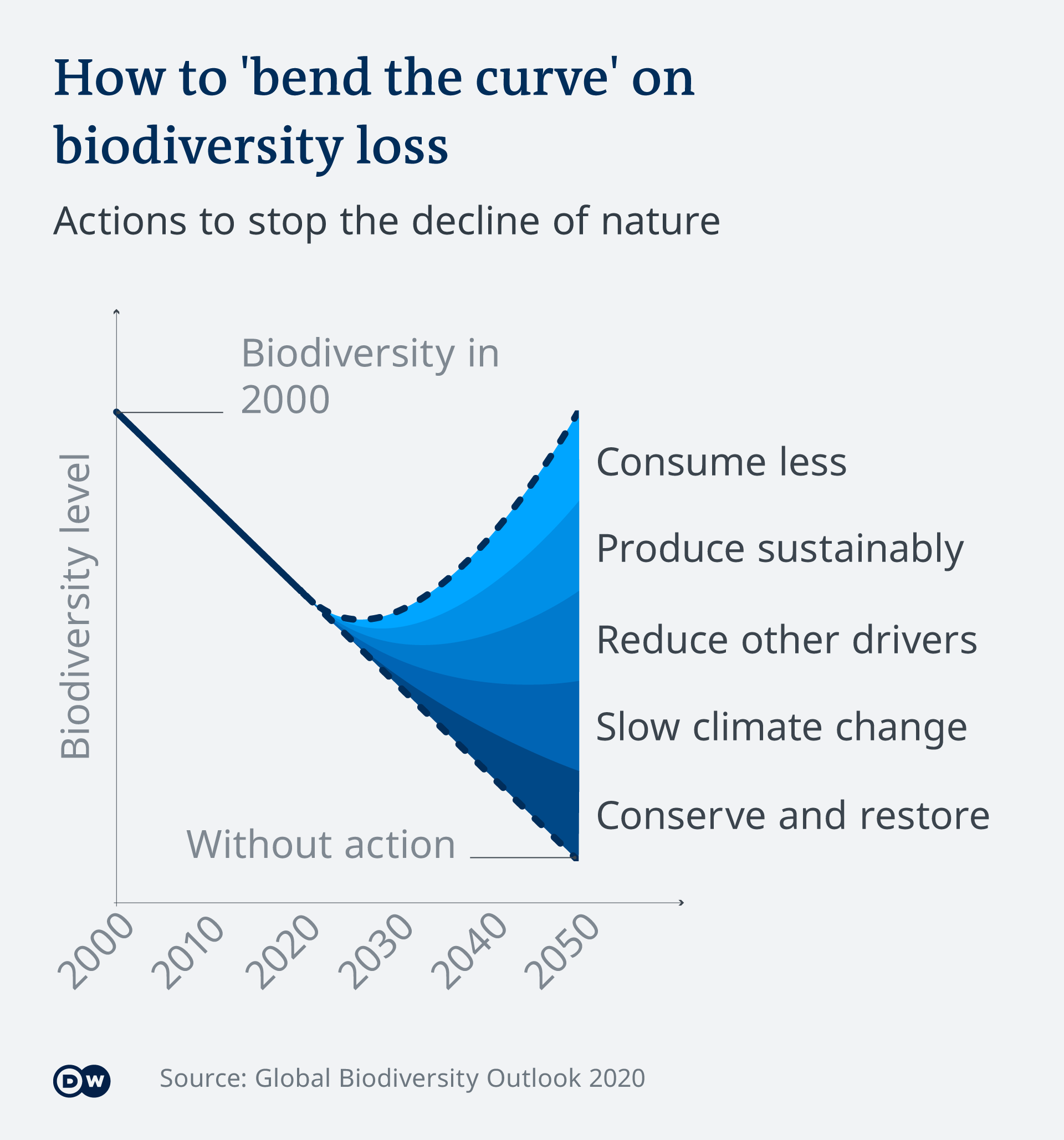 Infographic bending the curve on biodiversity loss