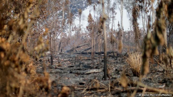 Queimada perto de Apui, no estado do Amazonas: destruição da floresta avança sob Bolsonaro