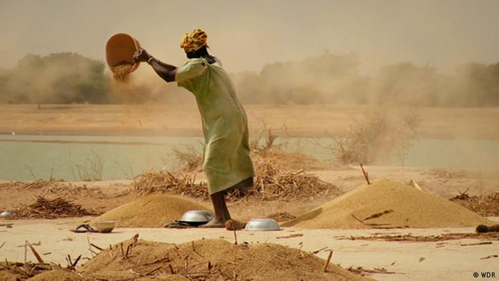 Le changement climatique provoque des sècheresses dramatiques au Sahel