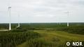 DW Sendung Global 3000 | Finnland Klima