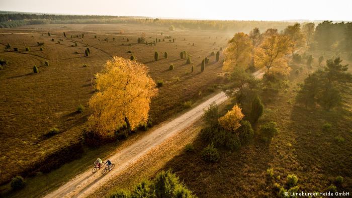 zwei Radfahrer in der Heide, Panormablick von oben, Lüneburger Heide, Deutschland | Indian Summer (Lüneburger Heide GmbH)