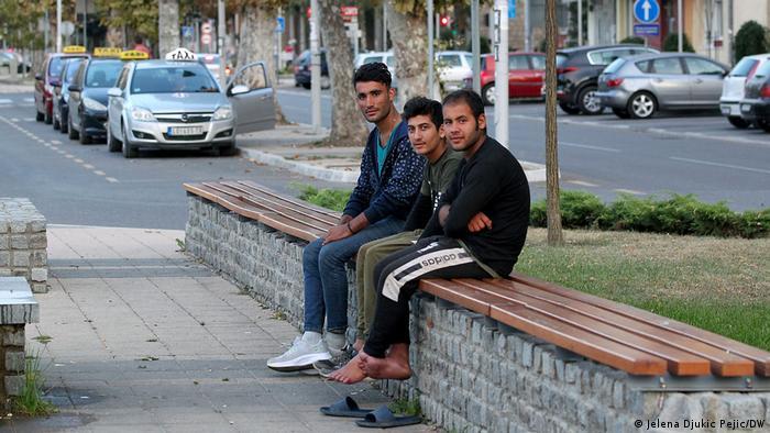 Un grup de refugiati afgani aflati in Serbia