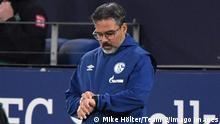 Fußball Trainer David Wagner auf Schalke entlassen