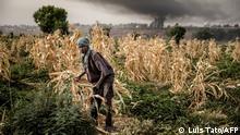 Nigeria Landwirtschaft Bauern