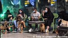 Saudiarabien 1. Hunde-Café in Khobar eröffnet