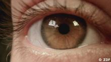Gesunde Augen