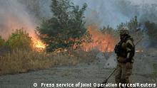 Ukraine Waldbrände in der Region Luhansk