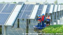 20.09.2020, China, Chuzhou: Power station staff take boats to check solar panels on the lake where local farmers raise fish, Tianchang county-level city, Chuzhou city, east China's Anhui province, 20 September 2020. Foto: Song Weixing/HPIC/dpa |