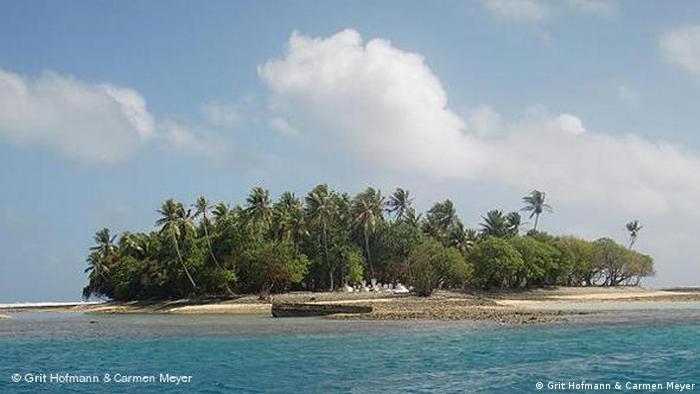 Küstenerosion in Mikronesien. (Foto: Grit Hofmann & Carmen Meyera)