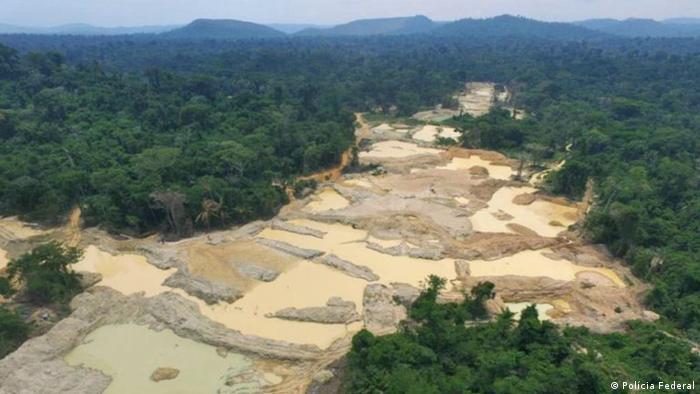 Deforestación ilegal en la Amazonía brasileña.