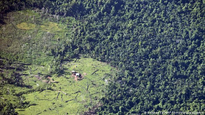 Murubila, selva tropical deforestada en Nicaragua.