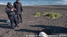 Russland  Umweltverschmutzung Strand von Kamtschatka