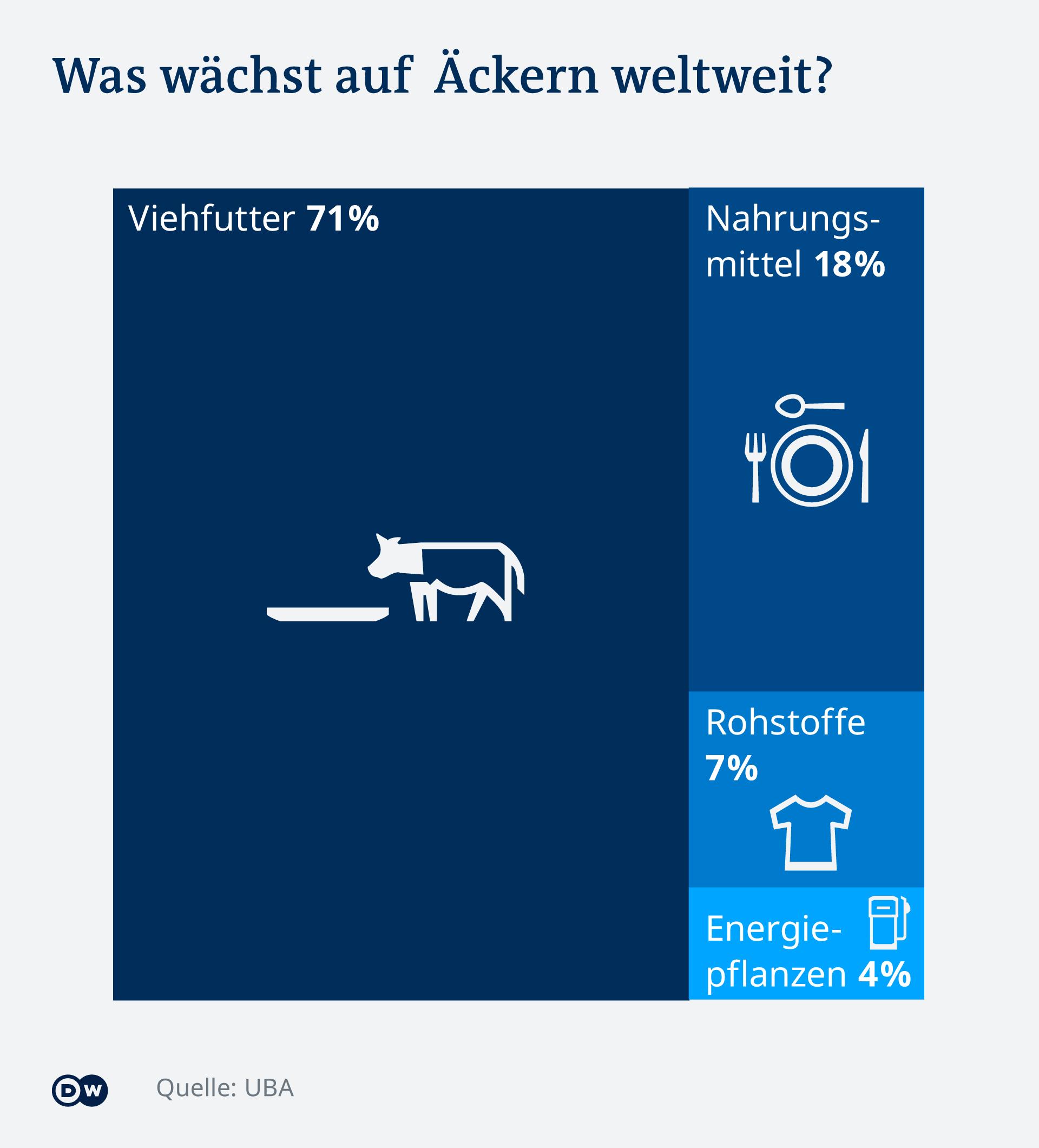 Infografik Nutzung Ackerfläche weltweit : 71 % der Ackerfläche wird nur für Viehfutter benutzt und nur 18 % für nachurngsmittel