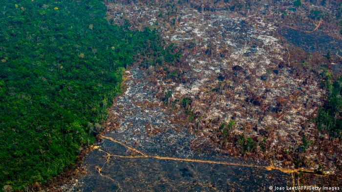 Vista aérea de desmatamento na Reserva Biológica Nascentes da Serra do Cachimbo, em Altamira, Pará