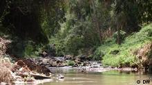 Eco Africa I EAAE_Kenya_Park