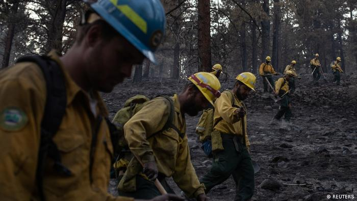 Firefighters walk through burned forest in the US