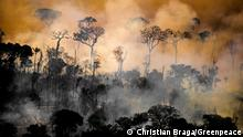 Deforestation in Brazil´s Amazon forest