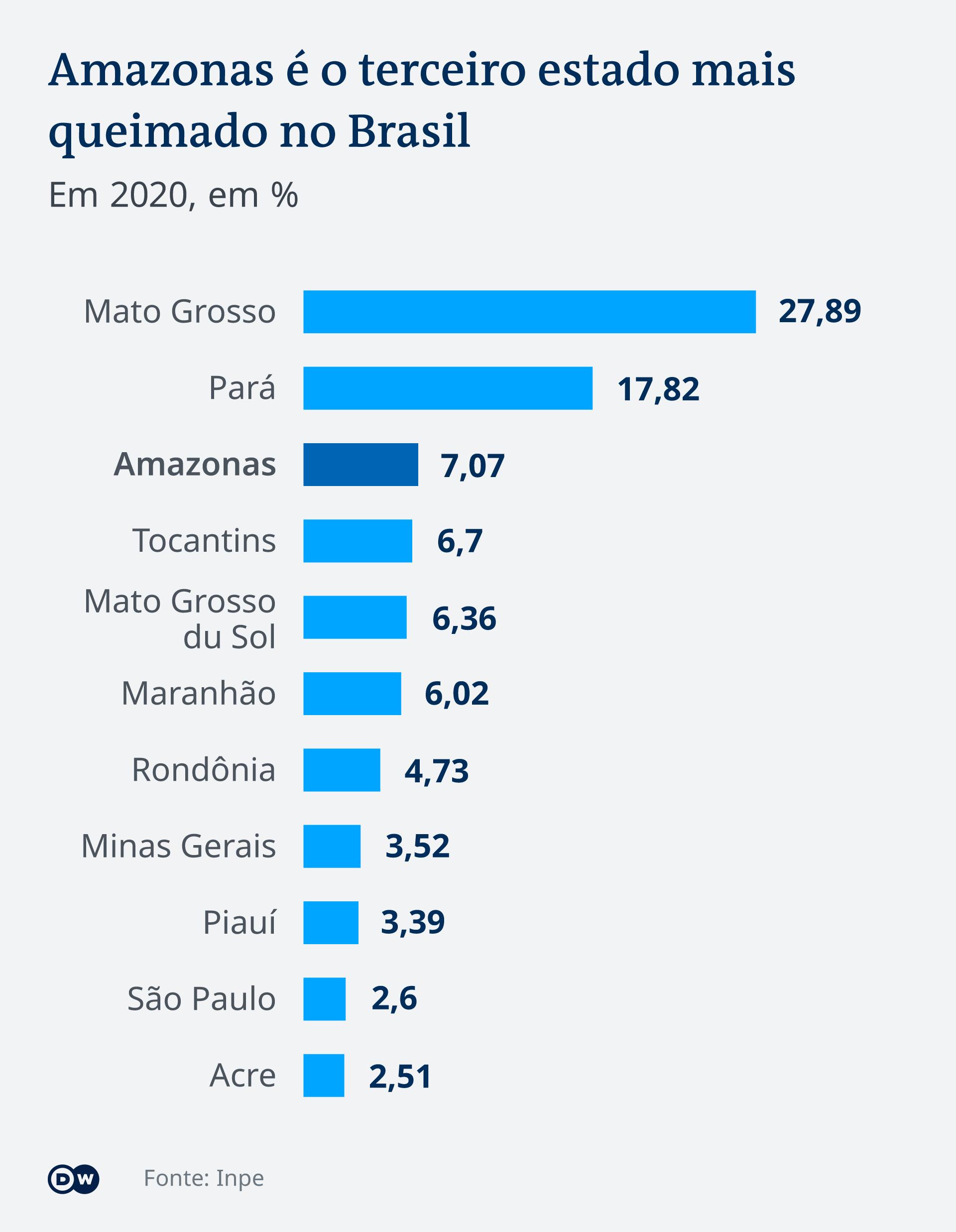 Infografik Brasilien Wald PT