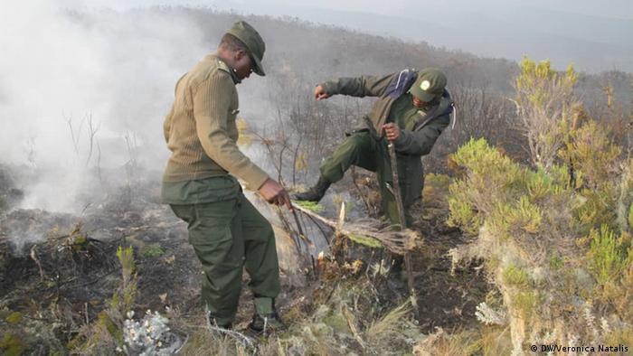 Tanzanian firefighters battle the blaze on Kilimanjaro