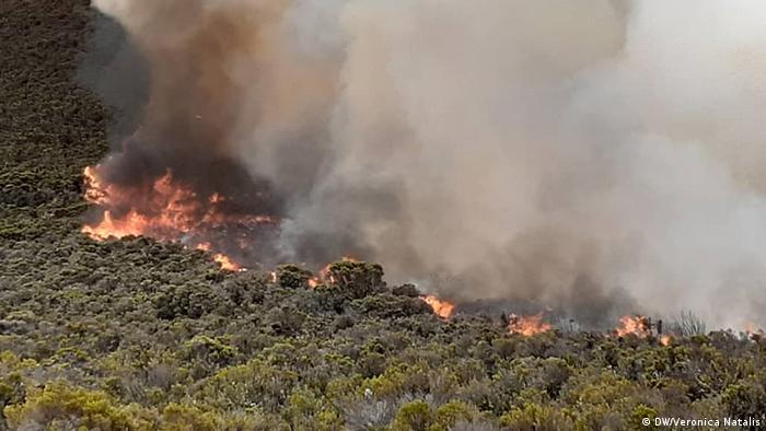 Flames burning through bush on Mount Kilimanjaro