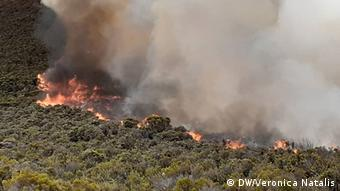 Tansania Feuer auf dem Kilimandscharo (DW/Veronica Natalis)