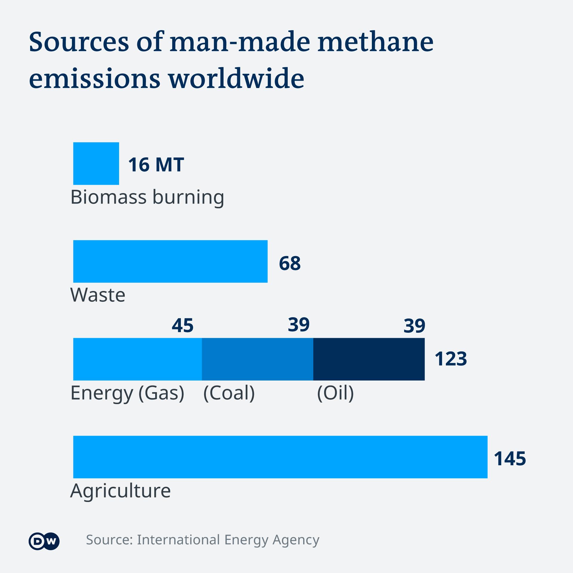 Infografik Methangas Emissionen EN