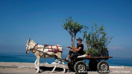 BdTD Gaza-Stadt Palästinenser, Mundschutz & Eselskarren (Mohammed Abed/AFP/Getty Images)