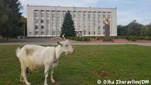 Ukraine Lokalwahlen | Nikopol