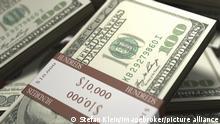 Gebündelte Hundertdollarscheine Geldstapel
