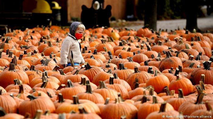 USA I Illinois I Coronavirus I Halloween (Nam Y. Huh/AP/picture-alliance)
