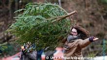 BdT Deutschland Weltmeisterschaft im Weihnachtsbaumwerfen