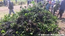 Äthiopien Entfernung von Wasserhyazinthen am Tana See
