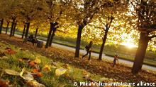 Goldener Oktober Herbst Sonne