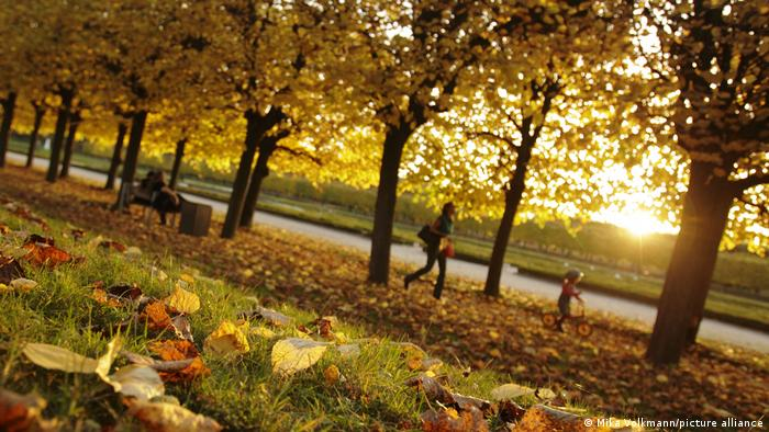 Разходката в парка или в гората е отлично средство за намаляване на стреса по време на пандемия