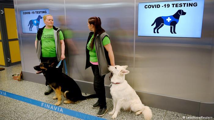Finnland Coronavirus Spürhunde am Flughafen Helsinki (Lehtikuva/Reuters)