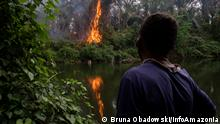 Brasilien l Waldbrände im Amazonas - Feuer in Mato Grosso