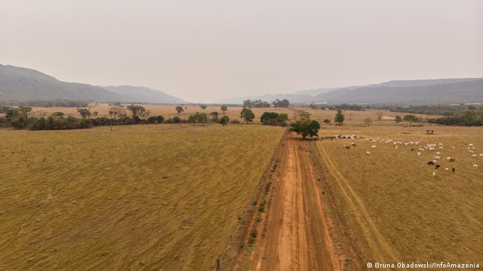Início da estrada que leva à Comunidade Quilombola Baixio, no Território Quilombola Vão Grande