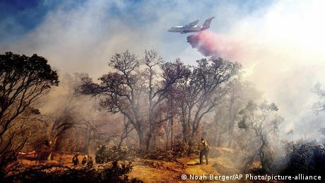 BdTD USA Waldbrände in Kalifornien (Noah Berger/AP Photo/picture-alliance)