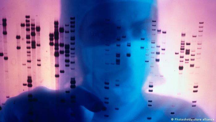 Projekt človeške genetike