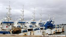 Barcos de ematum em desuso Title: Ematum Boats Keywords: Ematum, boats, Boote, Maputo, Mozambique, Mosambik, Schiffe, Thunfisch, Fischfang, illegale Schulden, Schuldenskandal, Korruption Place: Maputo, Mozambique / Mosambik Photographer: Roberto Paquete / DW Date: 21/12/2018 Description: The vessels of the tuna fishing company Empresa Moçambicana de Atum (EMATUM), acquired with money considered in Mozambique as a hidden debt, are anchored in the fishing port of Maputo, Mozambique without any activity. -- Foto von Roberto Paquete, freier Fotograf aus Mosambik. Er tritt die Rechte an die DW ab. Zulieferung durch Johannes Beck