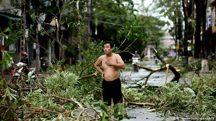 A man looks at downed trees and other damage from the typhoon
