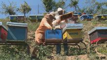 Global Kosovo Bienen Beschreibung: Sharr-Nationalpark Kosovo: Die Imkerin Shqipe Shala produziert mit 150 Bienenvölkern Bio-Honig. Rechte: sind gegeben! Copyright: DW